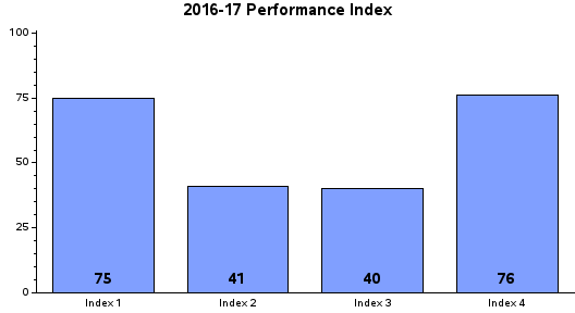 Performance Index Report